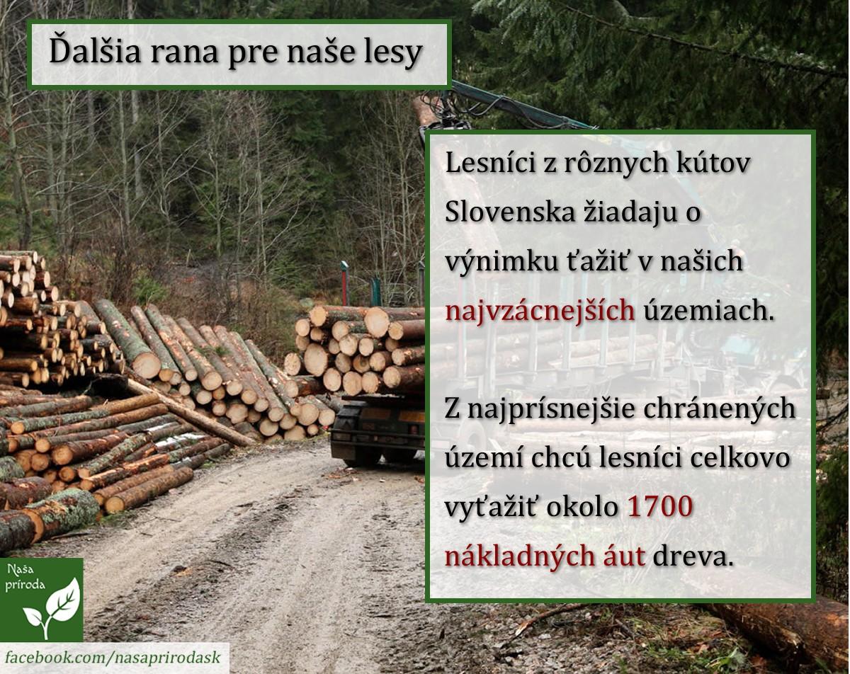 Ťažba dreva Naša príroda